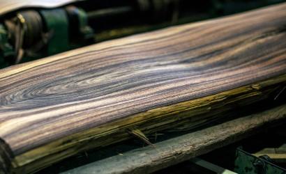 Шпон з екзотичних порід деревини